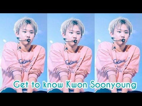 SEVENTEEN - HOSHI FACTS || GET TO KNOW KWON SOONYOUNG