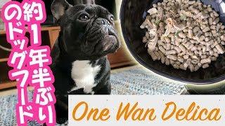 【ワンワンデリカ】手作り食に慣れた犬はドッグフード食べなくなる?検証