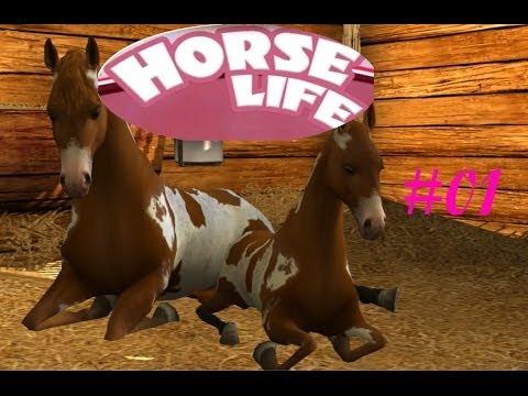 horse spiele