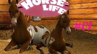 Horse Life #01 (German/HD) Bestes Spiel ever!!