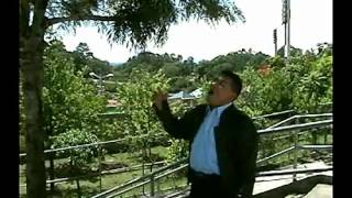 TOMAS GOMEZ REY MIO