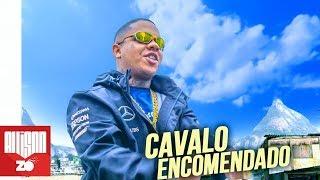 Baixar MC Magal - Cavalo Encomendado (Áudio Oficial) DJ Russo e DJ CK