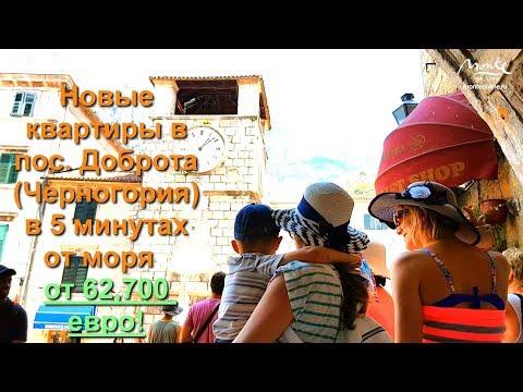 Недвижимость в Черногории - новые квартиры в Которе