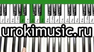 Песни на пианино Билан мечтатели как играть на пианино