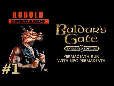 Let's not die in BALDUR'S GATE (Ep. 1) #Permadeath #Memes #NPCpermadeath #Noreload |