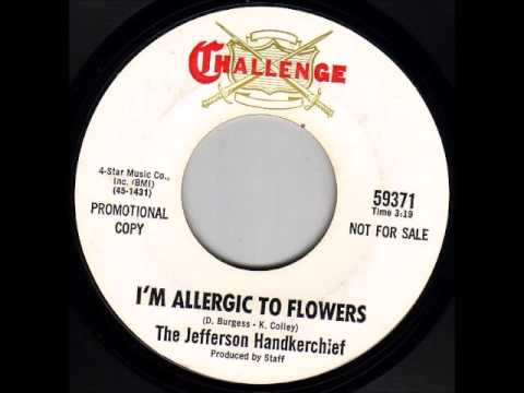 Resultat d'imatges de jefferson handkerchief - i'm allergic to flowers