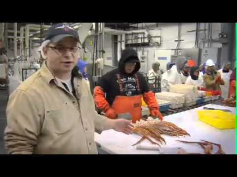 Bering Fisheries