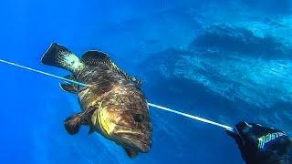 Spearfishing | CATCH and COOK🔥 - Grilled DUSKY GROUPER(Alpha - Omega)-  Ροφός πετάλι(Άλφα - Ωμέγα) ✅