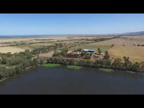 Nelshaby Reserve