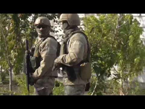 Поліція Одещини: На Одещині поліцейські виявили «конопляний рай» на території домоволодінь місцевих жителів