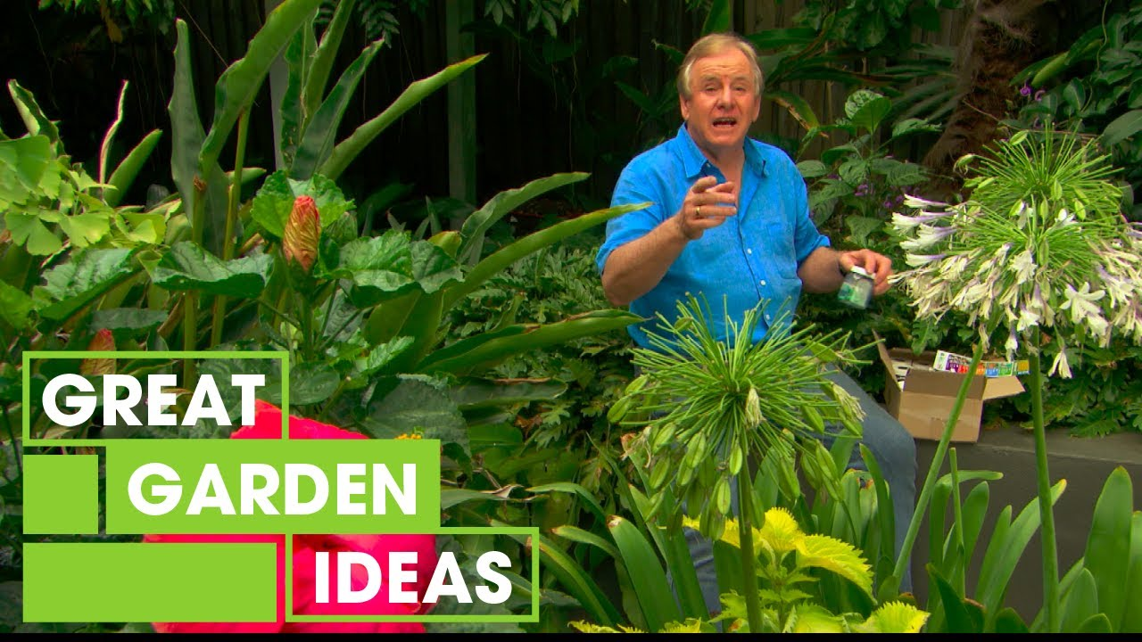 Great Garden Ideas How to keep insects out of your garden gardening great home great garden ideas s1 e29 workwithnaturefo