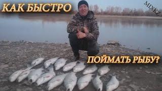 Лучшая Приманка Жереха Дикая Рыбалка река Каратал Моя рыбалка в Талдыкоргане Ловля 7 Rivers Karatal