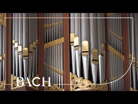 Bach - Dies sind die heil'gen zehn Gebot BWV 678 - Smits | Netherlands Bach Society