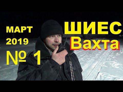 ШИЕС №1. Как мы ездили защищать Архангельскую область от московского мусора.
