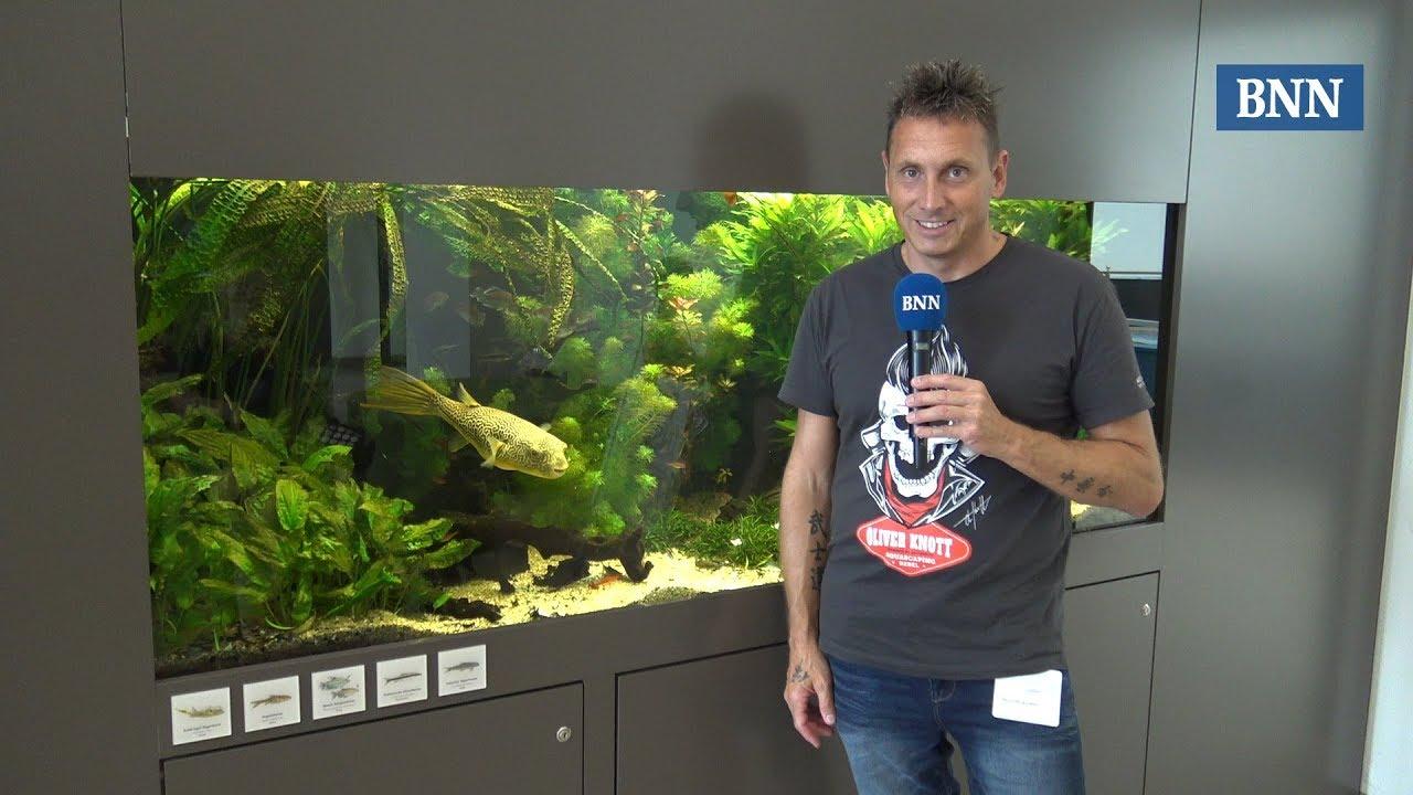 Aquascaper Oliver Knott Aus Karlsruhe