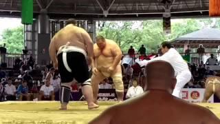 GEO Tsertsvadze vs RUS Karaev Sumo Worlds 2015