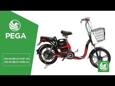 Đánh giá xe đạp điện Zinger Color Samsung Battery