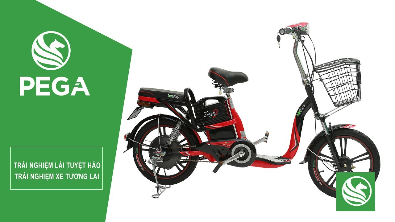 Kinh nghiệm chọn mua Xe đạp điện  HKbike Zinger Color 2