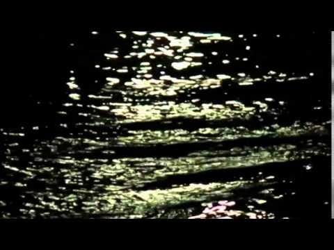 "Dream Museum - by The Odessa Strange - off the ""Tempo West"" album"
