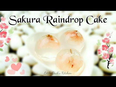 樱花果冻-❤-sakura-raindrops