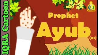 Prophet Stories For Kids | Prophet Ayub (AS) Islamic Cartoon Quran Stories Islamic Kids Video Ep 13