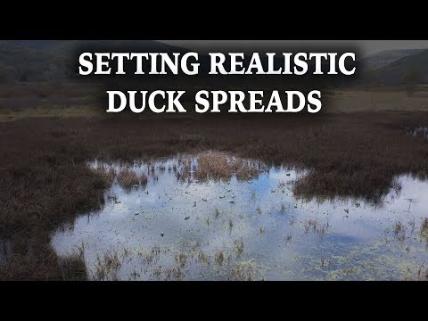 How To Set Realistic Decoy Spreads | Decoy Breakdown