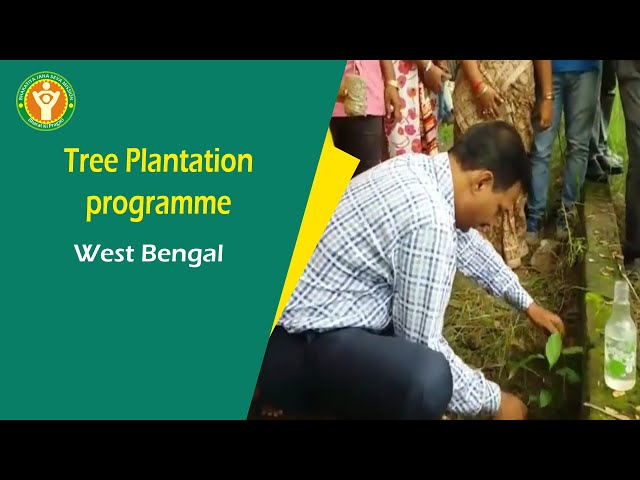 Tree Plantation programme in Kolkata, West Bengal , NGO on Environment