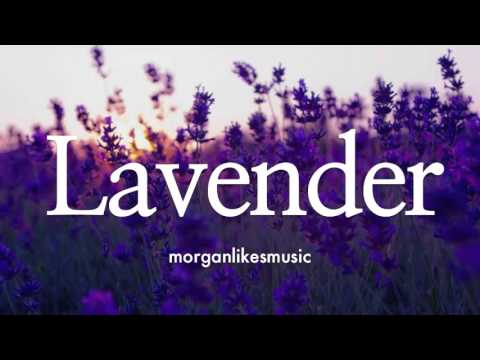 🎸 Acoustic Guitar Love Instrumental