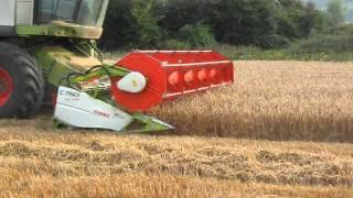 Claas Lexion 580s harvesting Barley in Co.Kilkenny!