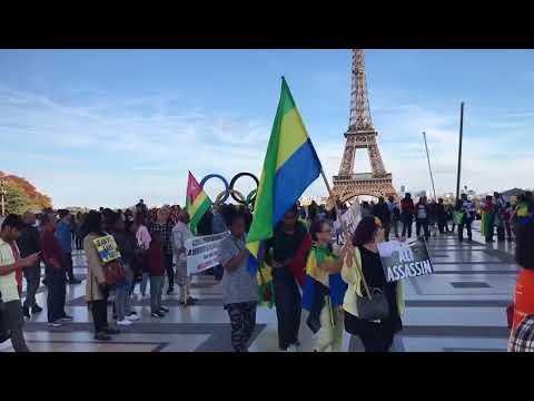 """Togo et Gabon, même combat contre la dictature """"Faure Gnassingbé démission, Ali Bongo dégage"""""""