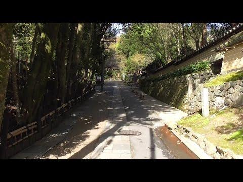 京都 桜の季節の青空の嵯峨野 Sagano under the blue sky at the time of cherry blossoms in full bloom, Kyoto