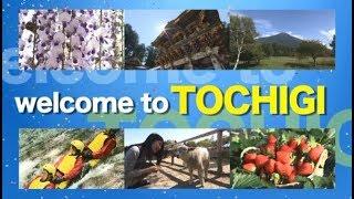 栃木県観光PR動画「ようこそ!栃木へ(WELCOME  TO  TOCHIGI!)」