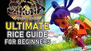 ULTIMATE Rice Farming Guide for Beginners (+ Timestamps) | SAKUNA OF RICE AND RUIN