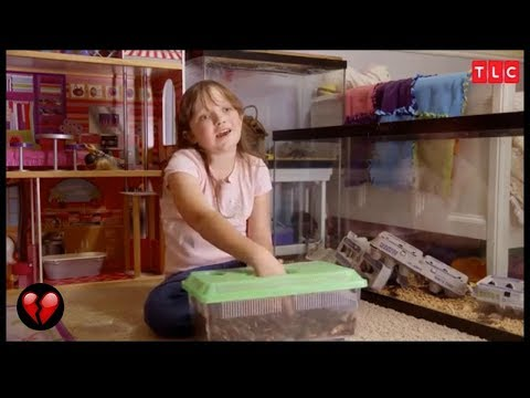 Little Girl Has Cockroaches As Household Pets (My Strange Addiction)