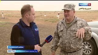 В Астраханской области начался отёл сайгаков