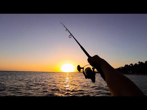 Last Fishing Trip Of 2019!