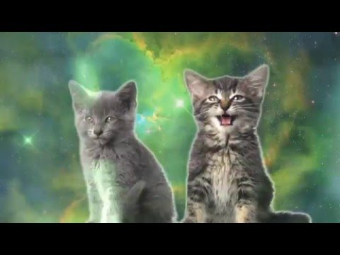 Space Cats - Magic Fly [ Spank0 Dubstep Remix ]