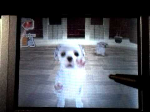 Nintendo Cats And Dogs Ds Reset