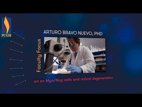 Learn How Arturo Bravo Nuevo PhD Is Working With Myo Nog Cells
