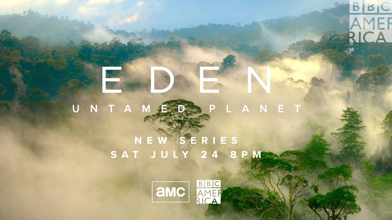 Download 'Eden: Untamed Planet' Trailer: Life as Nature Intended It 🌱 Premieres July 24 on BBC America & AMC