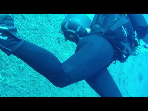 Zenobia Dive 1   July 2016