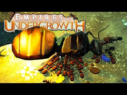 Soldier Ants KILL AND EAT Queen Ant! Ant Simulator Update - Empires of the Undergrowth Gameplay Ep 1