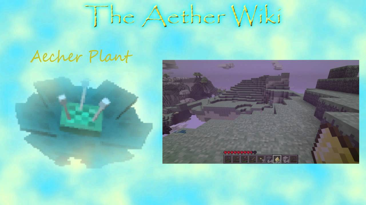 The Aether Wiki - Episode 12 - Aechor Plants