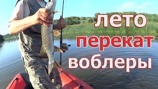 Где ловить летом на спиннинг Конечно же НА ПЕРЕКАТЕ Язь щука окунь судак Рыбалка на спиннинг