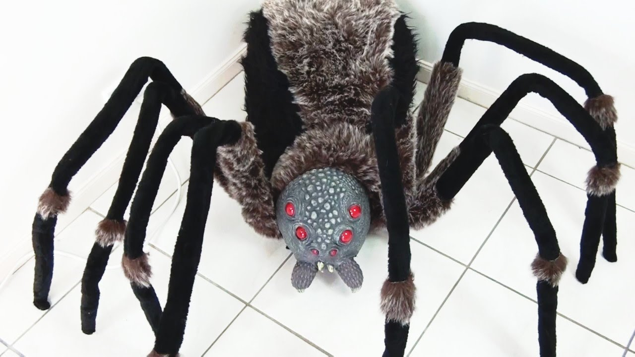 worlds largest giant spider with red led eyes - unboxing - youtube