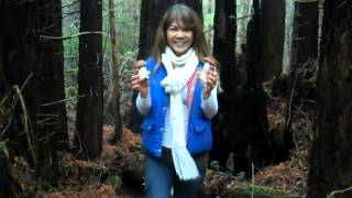 Mushroom Picking with Mom November 2012 Mendocino Coast