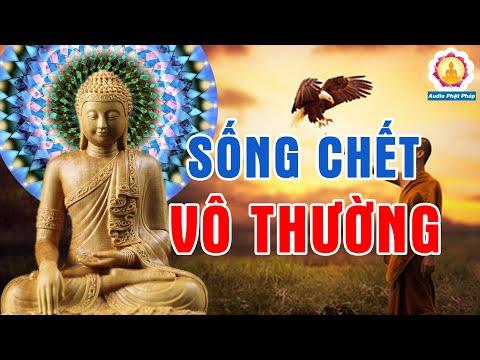 Lời Phật Dạy Kiếp Người Ngắn Ngủi Vạn Vật Vô Thường Biến Ảo Nghe Để Giác Ngộ Bớt Khổ Trong Tâm #Mới