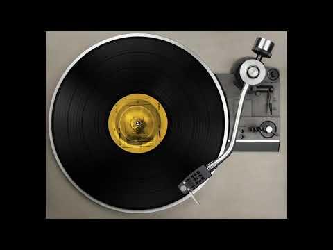 FEDAYI PACHA - Bhayravi Steppa Dub elephant moonwalk remix
