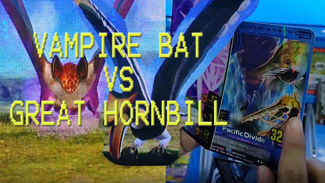 Animal Kaiser Vampire Bat Vs Bateleur, Great Hornbill ...