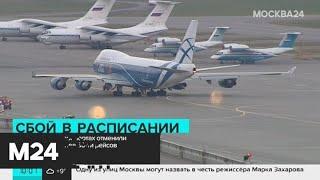 Смотреть видео В столичных аэропортах отменили и задержали около 40 рейсов - Москва 24 онлайн